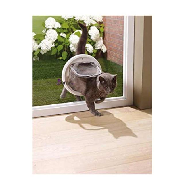 در تردد گربه مخصوص شیشه ساویک