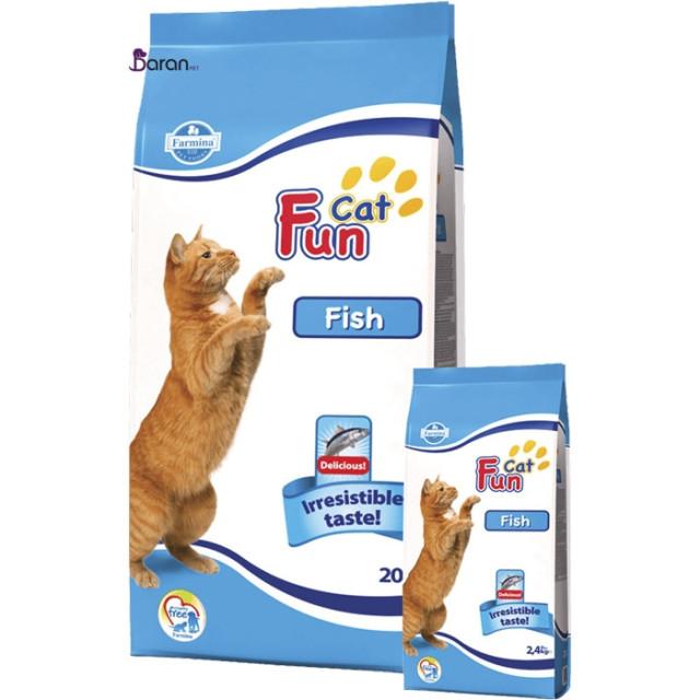 غذای خشک گربه فان کت حاوی ماهی :: Fun Cat Fish