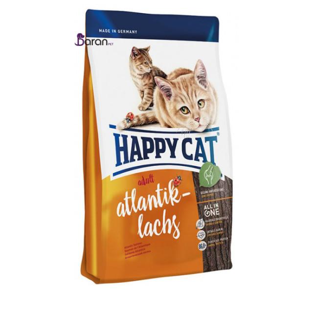 غذای خشک گربه بالغ حاوی سالمون (4 کیلوگرم)