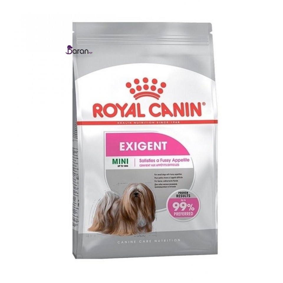 غذای سگ نژاد کوچک بدغذا اگزیجنت رویال کنین (3 کیلوگرم)