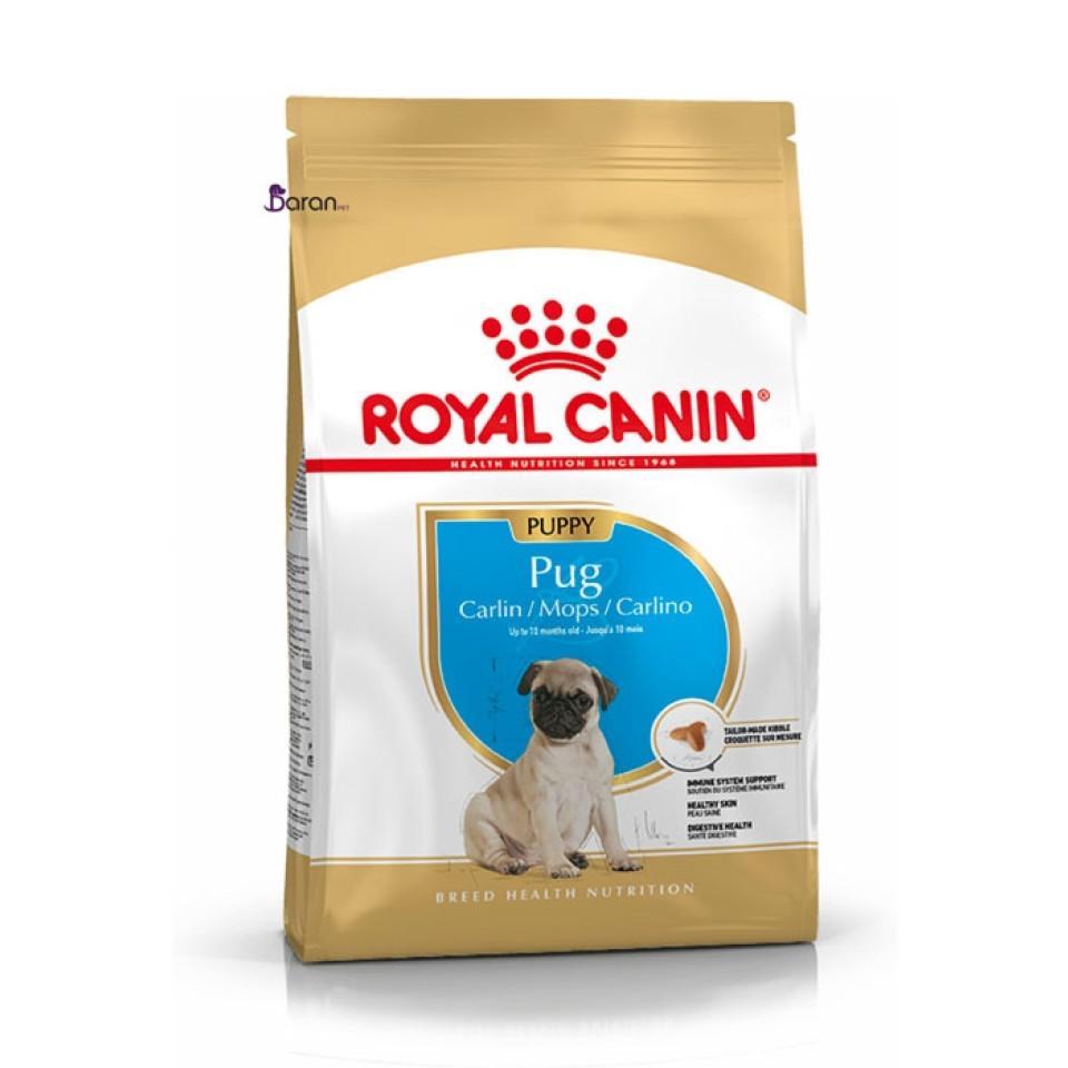 غذای خشک رویال کنین توله سگ نژاد پاگ 2 تا 10 ماه (1/5 کیلوگرم)