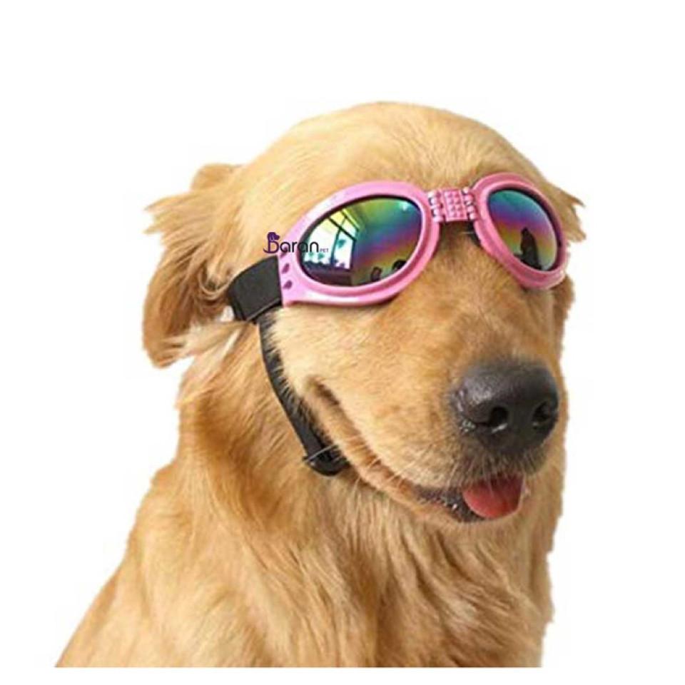 عینک دودی مخصوص سگ