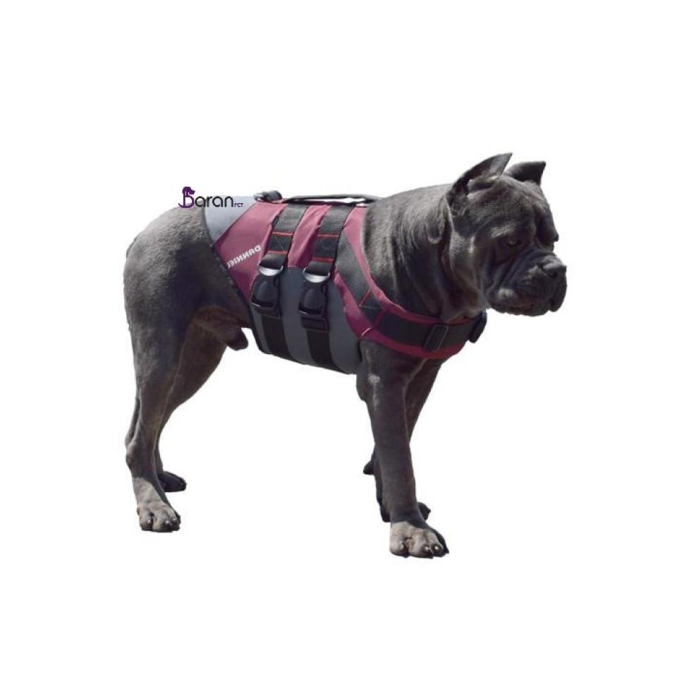 قلاده کمری سگ Bemelle سایز بزرگ