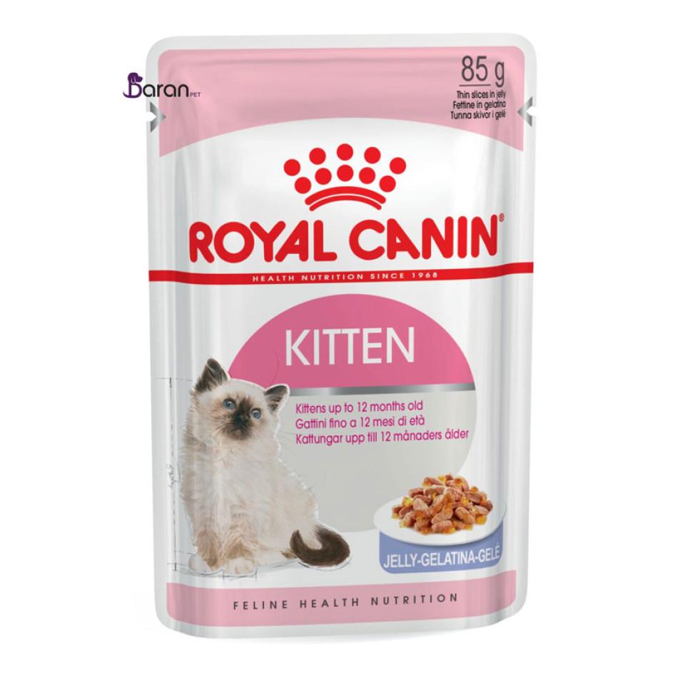 پوچ رویال کنین کیتن مخصوص بچه گربه 4 تا 12 ماه در ژله