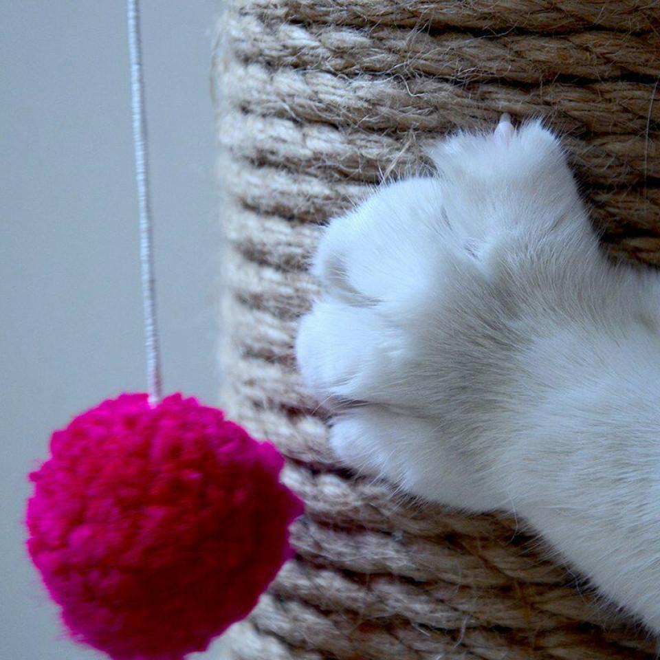 اسکرچر ناخن گربه با توپ بازی - عملکرد