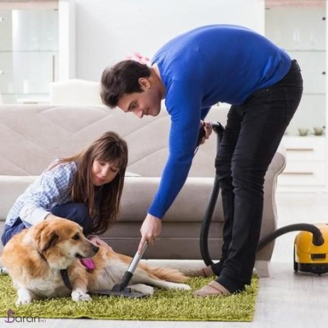 خانه تمیز با حضور حیوانات خانگی
