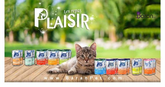 غذای گربه پلایزر