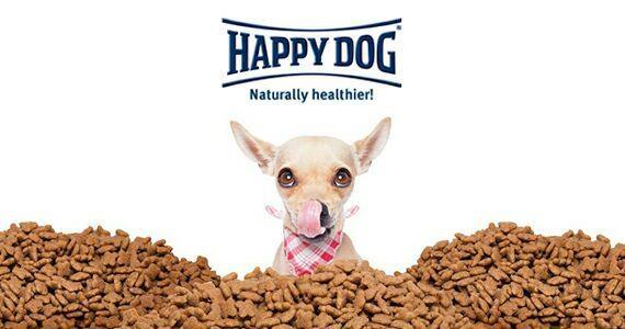 Happy Dog :: هپی داگ